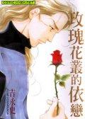 玫瑰花丛的依恋 预览图