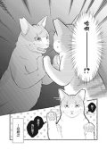 偶像猫猫~变成猫猫被偶像养起来了 预览图
